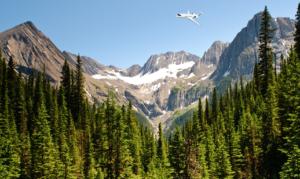 Private Jet Services Initiates PJS Carbon Neutrality Pledge